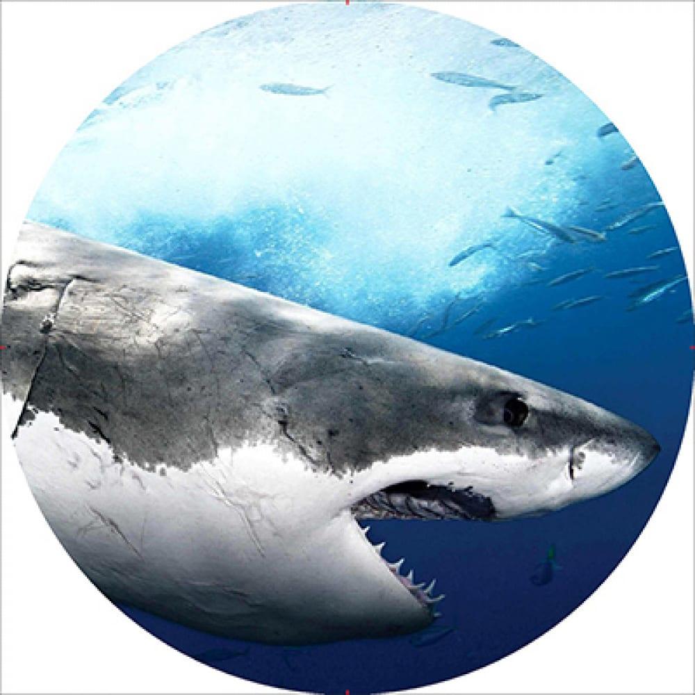 Купить Чехол запасного колеса skyway акула r15 экокожа полиэстер s06301042