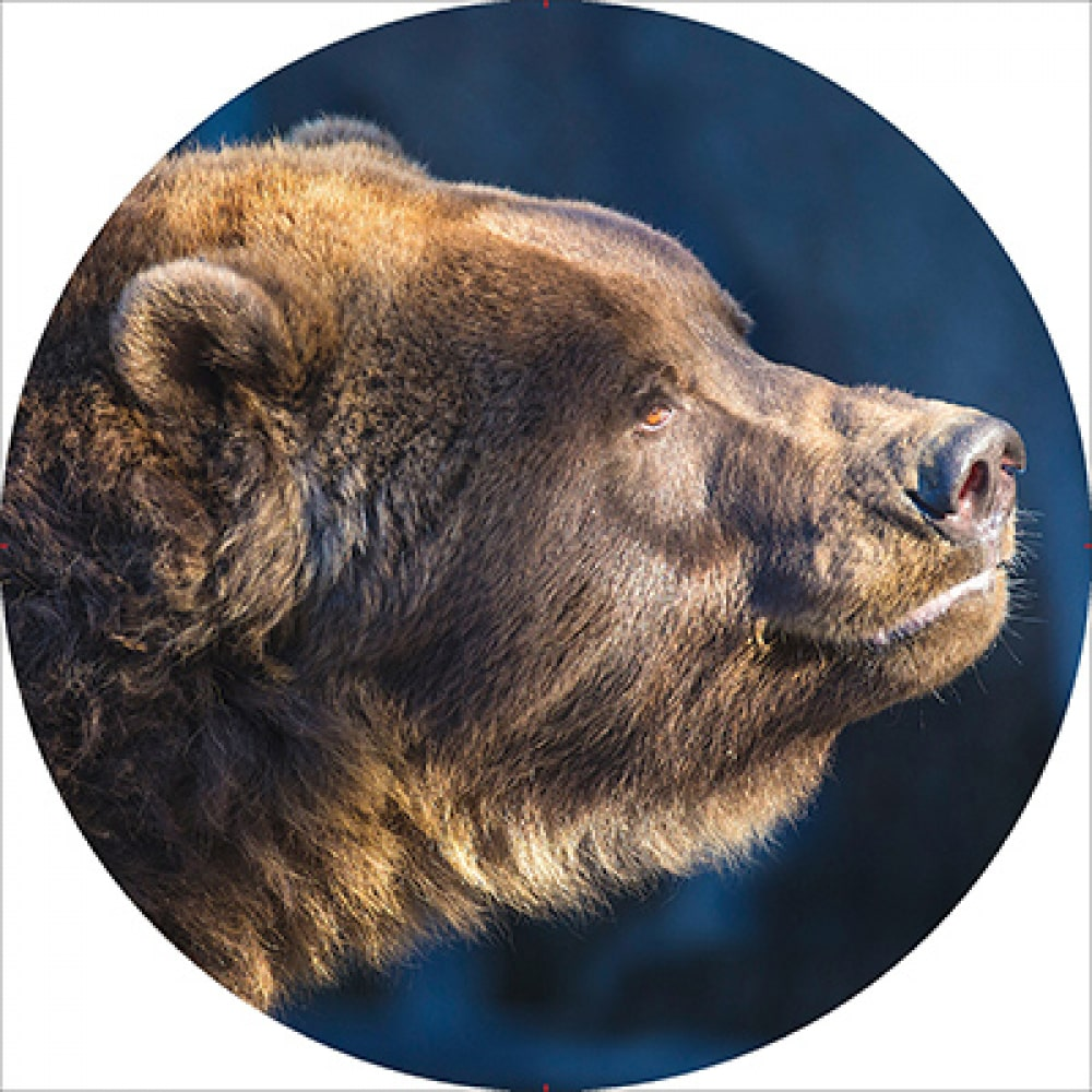 Купить Чехол запасного колеса skyway медведь r15 экокожа полиэстер s06301036