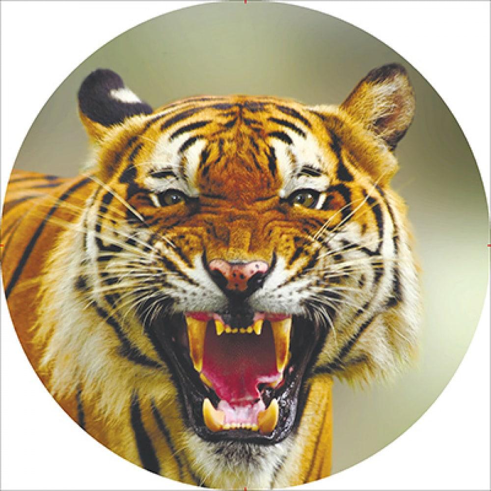 Купить Чехол запасного колеса skyway тигр 2 r15 экокожа полиэстер s06301034