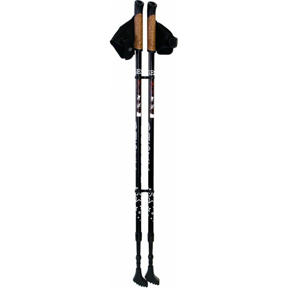 Двухсекционные палки для скандинавской ходьбы gess basic