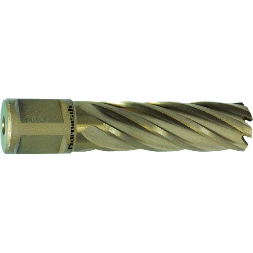 Сверло корончатое (19х55 мм; weldon 19) karnasch