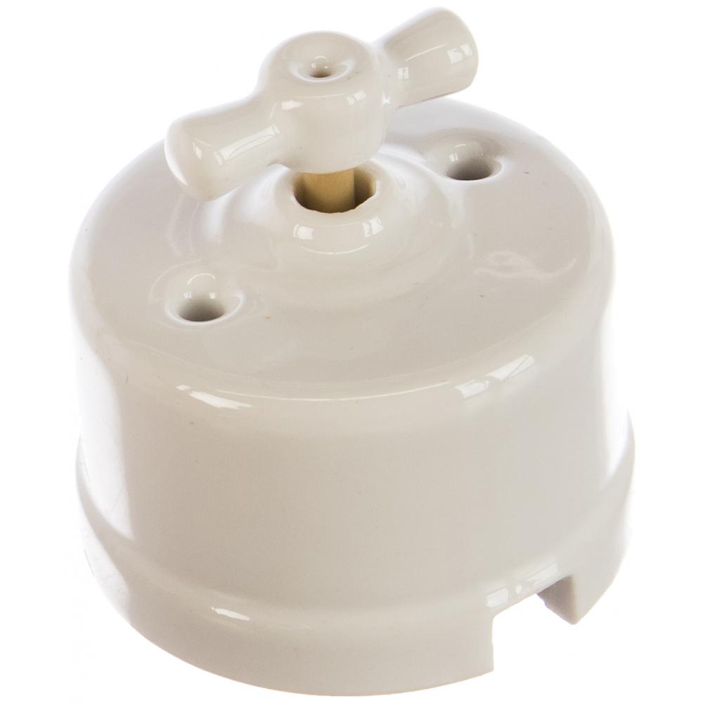 Двухклавишный выключатель retrika цвет белый r-sw-21