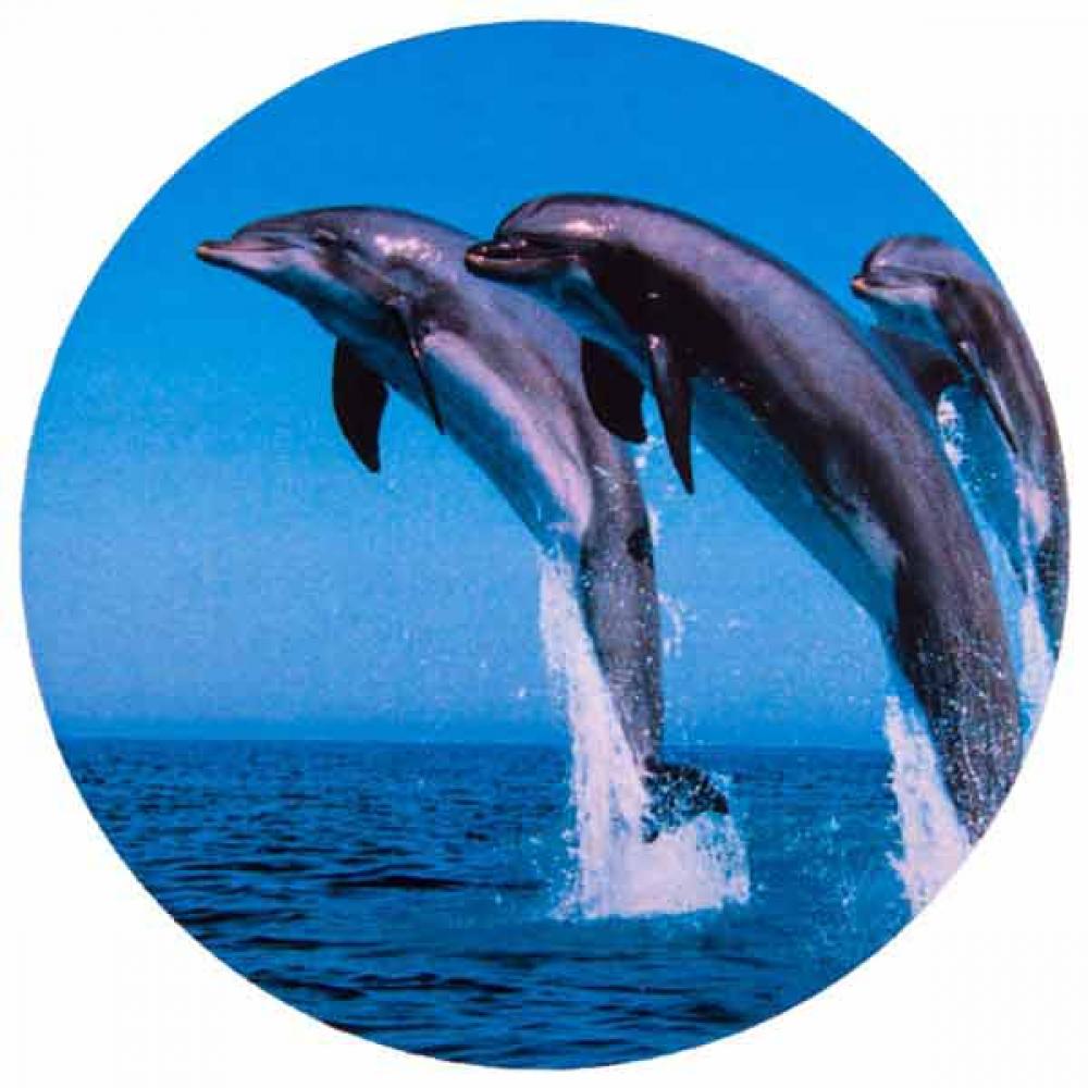 Купить Чехол запасного колеса skyway дельфины, r15 s06301011