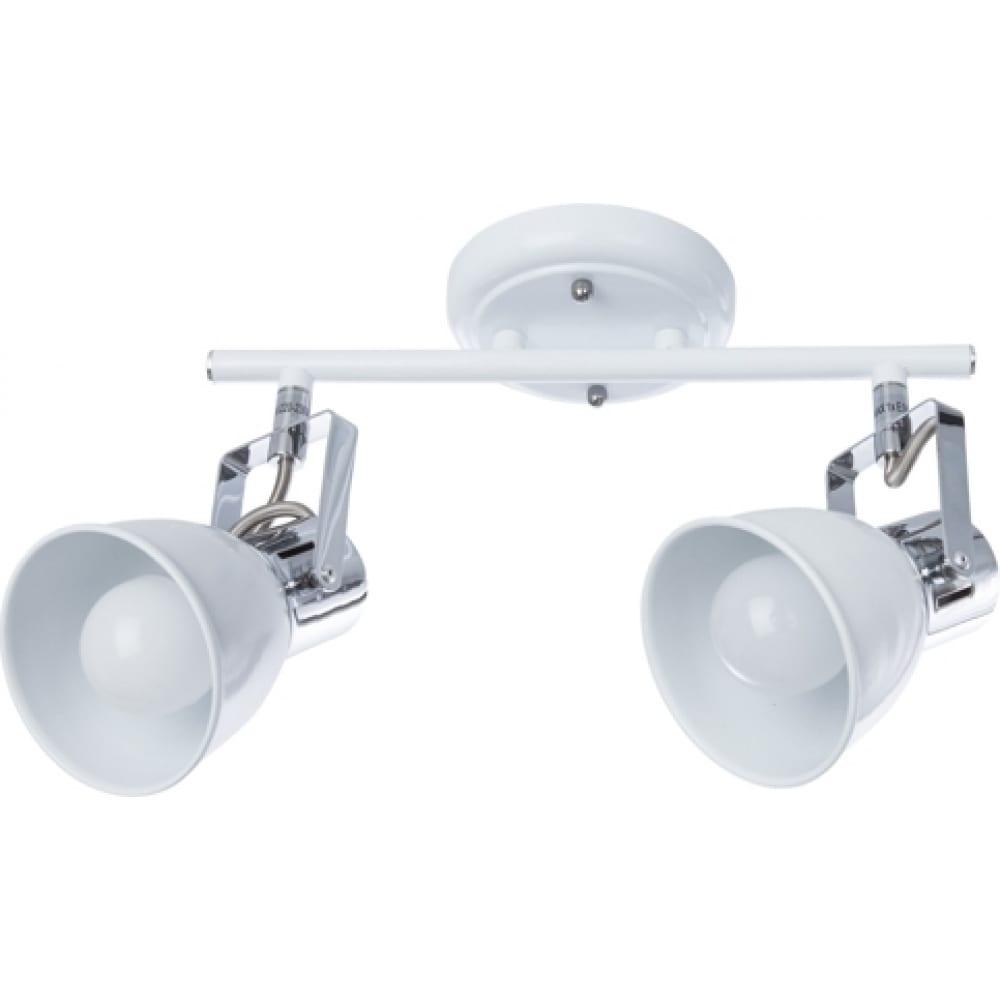 Потолочный светильник arte lamp a1677pl-2wh
