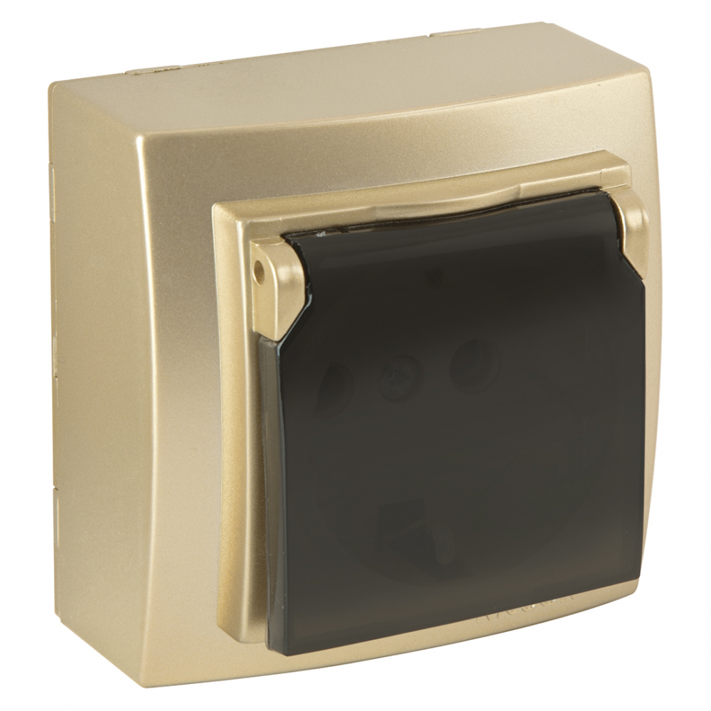 Розетка nilson 1оп з/к крышка золото themis metallic 26151018
