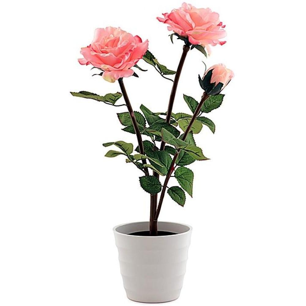 Декоративный светильник розовый, роза 3 старт led