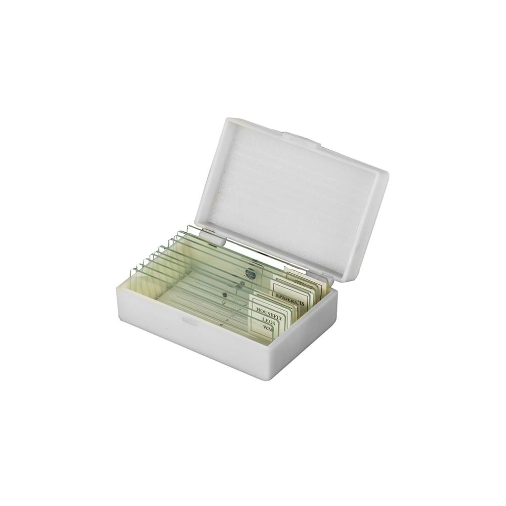 Купить Микропрепараты 5 образцов+5 предметных стёкол (стекло) микромед 20529