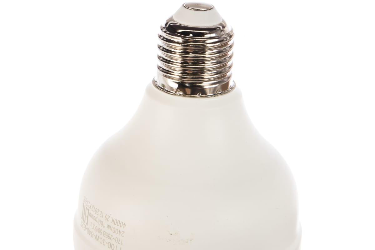 Светодиодная лампа ЭРА LED smd POWER 30W-4000-E27 Б0027003