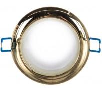 Влагозащищенный светильник MR16,12V/220V, 50W ЭРА WR1 GD C0043846